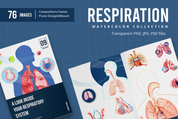 Respiratory System Watercolor Grafik Illustrationen von WatercolorEps