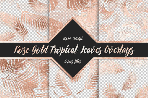 Rose Gold Tropical Leaf Overlays Graphic Objects By ItGirlDigital