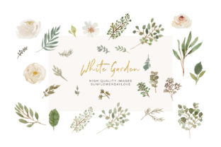 Print on Demand: Watercolor White Flowers Clipart, Ivory Graphic Illustrations By SunflowerLove