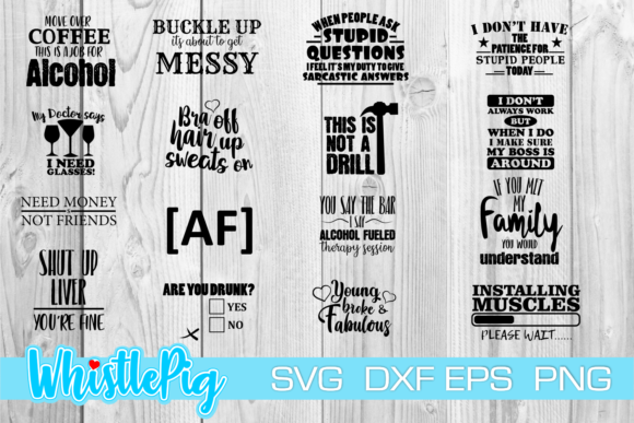 Print on Demand: Funny and Sarcasm Bundle Adult 16 Files Graphic Crafts By Whistlepig Designs