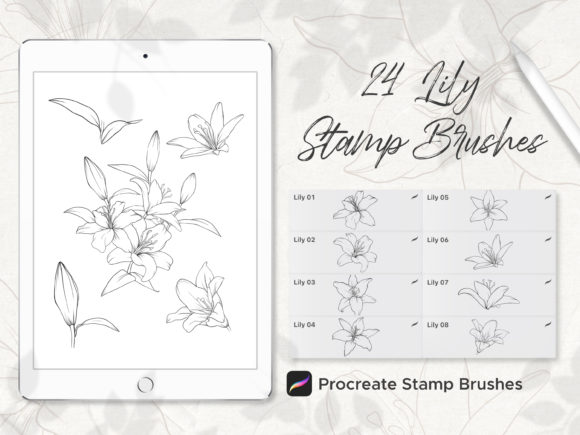 Lily Procreate Stamp Brushes Graphic Brushes By budianie
