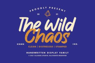 Print on Demand: The Wild Chaos Display Font By allouse.studio