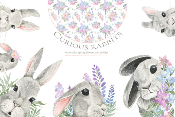 Print on Demand: Curious Rabbit. Watercolor. Graphic Illustrations By laffresco04