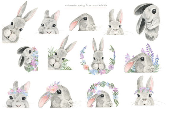 Curious Rabbit. Watercolor. Graphic Download