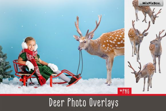 Print on Demand: Deer Photo Overlays Graphic Layer Styles By MixPixBox