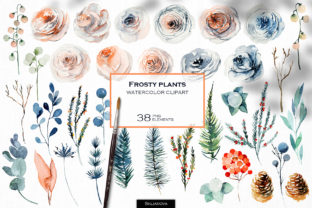 Frosty Plants Clipart Graphic Illustrations By HappyWatercolorShop
