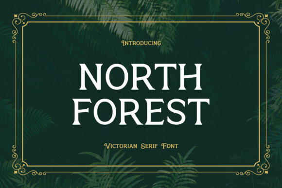 Print on Demand: North Forest Serif Font By uicreativenet