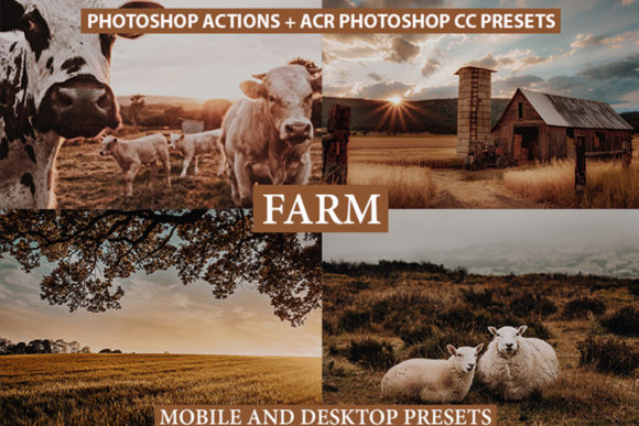 Photoshop Actions, ACR Presets, Lrpreset Graphic Actions & Presets By Visual Filters