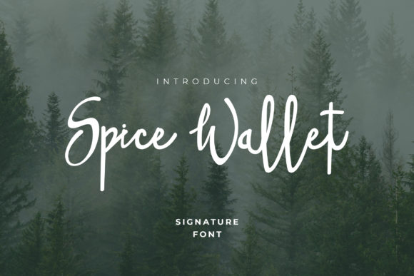 Spice Wallet Font