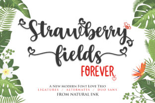 Print on Demand: Strawberry Fields Forever Script & Handwritten Font By Natural Ink