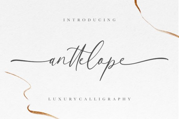 Print on Demand: Anttelope Script & Handwritten Font By CreatypeStudio