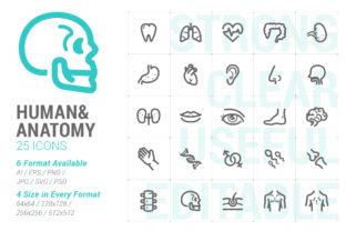 Human & Anatomy Strong Line Icon Grafik Icons von Ctrl[A]Studio