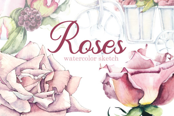 Watercolor Different Pink Roses Graphic Objects By Мария Кутузова
