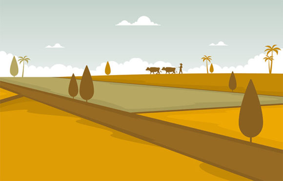 Asian Rice Field Golden Paddy Plantation Graphic Illustrations By jongcreative