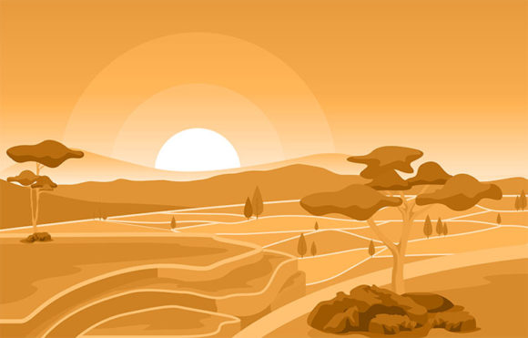 Golden Sunrise in Asian Rice Field Paddy Graphic Illustrations By jongcreative