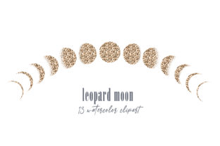 Print on Demand: Leopard Moon Phases Clipart. Moon Logo Graphic Illustrations By Tiana Geo