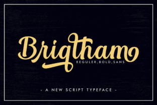 Print on Demand: Brigtham Script & Handwritten Font By Skinny type