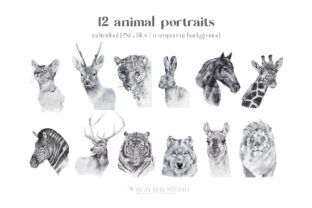 Watercolor Animal Portraits and Flowers - 2