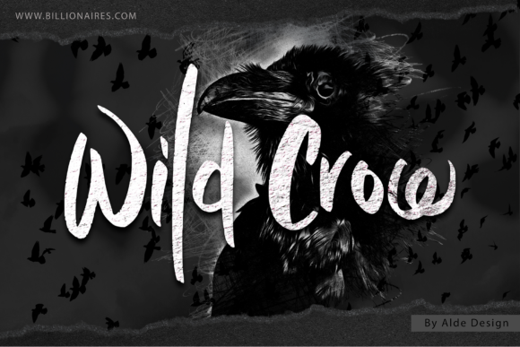 Print on Demand: Wild Crow Script & Handwritten Font By aldedesign