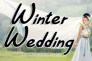 Print on Demand: Winter Wedding Display Font By dazzlinggleam