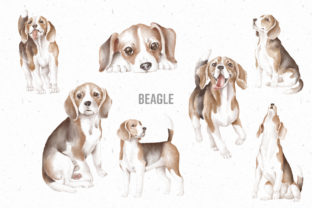 Print on Demand: Beagle Dogs Hand Drawn Clipart Png Graphic Illustrations By Architekt_AT