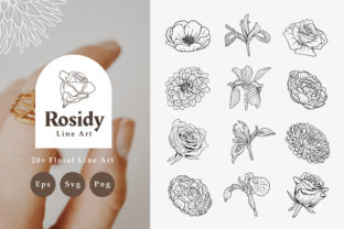 20+ Rosidy Floral Line Art Graphic Illustrations By Nurmiftah