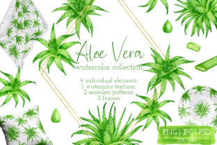 Aloe Vera Watercolor Succulent Clipart Graphic Illustrations By Olya Haifisch