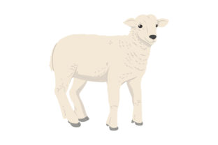 Sheep Vector Graphic Icons By thegoodwaral