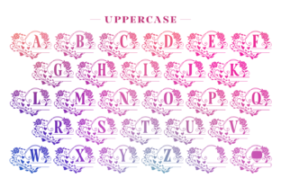 Print on Demand: Nimaly Decorative Font By Situjuh 2
