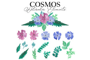 Cosmos Watercolor Package Graphic Web Elements By Monogram Lovers