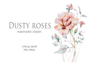 Print on Demand: Watercolor Rose Flower Clipart Graphic Illustrations By Tiana Geo