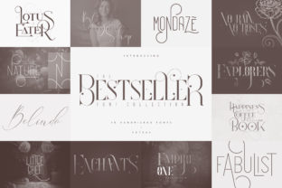 Print on Demand: The Bestseller Collection Display Font By vladfedotovv