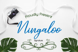 Print on Demand: Ningaloo Script & Handwritten Font By adelaideausy