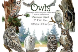 Owls in the Forest Watercolor Clipart Grafik Illustrationen von Marine Universe