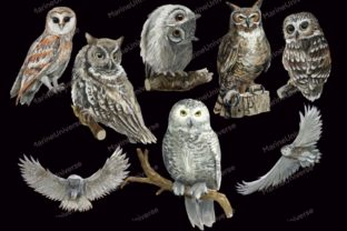 Print on Demand: Owls in the Forest Watercolor Clipart Graphic Illustrations By Marine Universe 7