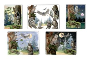 Print on Demand: Owls in the Forest Watercolor Clipart Graphic Illustrations By Marine Universe 8