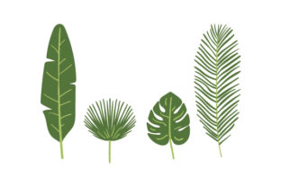 Tropical Green Leaves Designs & Drawings Craft Cut File By Creative Fabrica Crafts