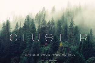 Print on Demand: Cluster Sans Serif Font By jehansyah251