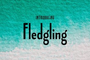 Print on Demand: Fledgling Sans Serif Font By Typodermic