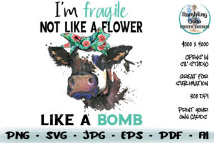 Print on Demand: Fragile Like a Bomb Graphic Illustrations By RamblingBoho