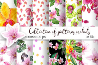 Print on Demand: Orchid Watercolor Digital Paper Graphic Patterns By ElenaZlataArt