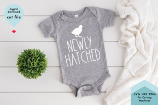 Print on Demand: Spring Newborn Svg, Newly Hatched Baby Graphic Crafts By Lettershapes