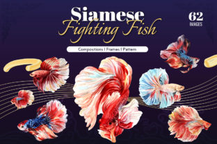 Siamese Fighting Fish Watercolor Graphic Illustrations By WatercolorEps
