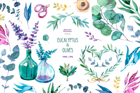 Watercolor Eucalyptus and Olive Graphic Illustrations By NataliMyaStore