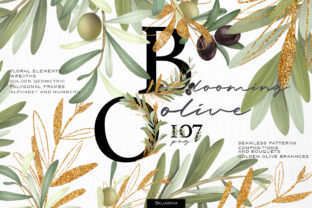 Blooming Olive Collection Graphic Illustrations By HappyWatercolorShop