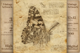 Print on Demand: Vintage Butterfly Da Vinci Drawing Style Graphic Illustrations By Vintage 12by12