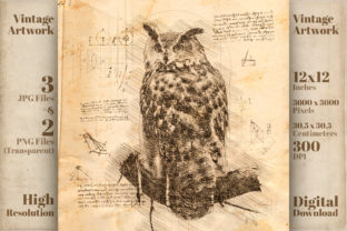 Print on Demand: Vintage Owl Da Vinci Drawing Style Graphic Illustrations By Vintage 12by12