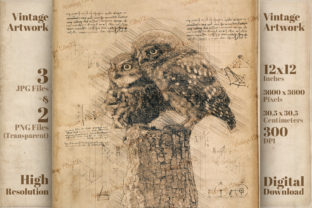 Print on Demand: Vintage Owls Da Vinci Drawing Style Graphic Illustrations By Vintage 12by12