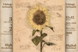 Print on Demand: Vintage Sunflower Da Vinci Drawing Style Graphic Illustrations By Vintage 12by12