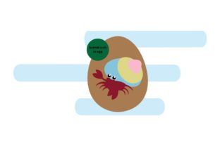 Easter Egg and Crab Graphic Illustrations By luckypursestudio